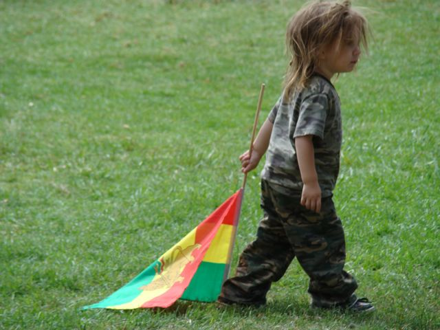 reggae5